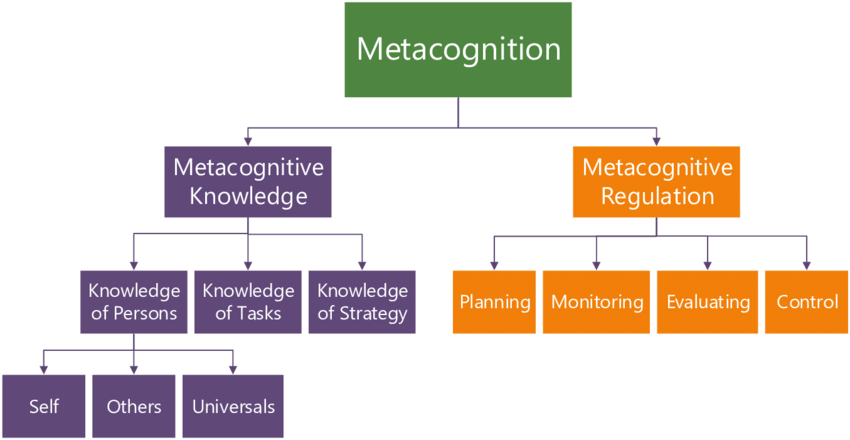 Theoretical Model of Metacognition